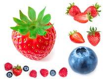 απομονωμένη φράουλα Φρέσκα ώριμα ολόκληρα φρούτα φραουλών που απομονώνονται Στοκ φωτογραφίες με δικαίωμα ελεύθερης χρήσης