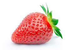 απομονωμένη φράουλα φύλλ&ome Στοκ εικόνα με δικαίωμα ελεύθερης χρήσης