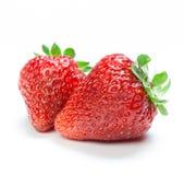 απομονωμένη φράουλα Στοκ εικόνες με δικαίωμα ελεύθερης χρήσης