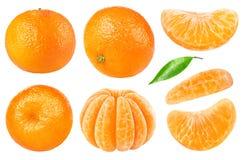 Απομονωμένη tangerine συλλογή στοκ εικόνα