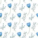 Απομονωμένοι μπλε λουλούδι και κλάδος με Στοκ Φωτογραφίες