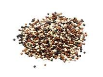 απομονωμένοι quinoa σπόροι στοκ φωτογραφίες