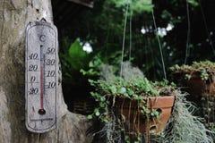 απομονωμένος ανασκόπηση άσπρος ξύλινος θερμομέτρων Στοκ φωτογραφία με δικαίωμα ελεύθερης χρήσης