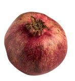 Απομονωμένος γλυκός κόκκινος γρανάτης Στοκ φωτογραφία με δικαίωμα ελεύθερης χρήσης