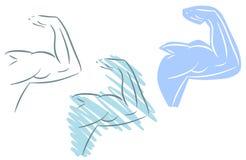 Απομονωμένος μυϊκός βραχίονας απεικόνιση αποθεμάτων
