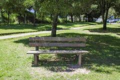 Απομονωμένος ξύλινος πάγκος σε ένα πάρκο που περιβάλλεται από τη χλόη και τα δέντρα υπόλοιπο lap-top εστίασης φλυτζανιών έννοιας Στοκ Εικόνα