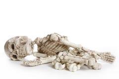 απομονωμένος σκελετός Στοκ Φωτογραφίες