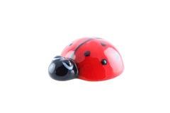 απομονωμένος ladybug Στοκ Εικόνες