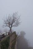 Απομονωμένο δέντρο πάνω από ένα βουνό Στοκ φωτογραφίες με δικαίωμα ελεύθερης χρήσης
