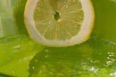 απομονωμένο ανασκόπηση λευκό φετών λεμονιών Στοκ φωτογραφία με δικαίωμα ελεύθερης χρήσης