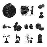 Απομονωμένο αντικείμενο της ποιότητας και του εργαστηριακού λογότυπου Σύνολο ποιότητας και γενετικά συμβόλου αποθεμάτων για τον Ι διανυσματική απεικόνιση