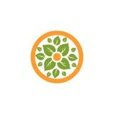 Απομονωμένο αφηρημένο στρογγυλό φυσικό λογότυπο μορφής Πράσινα φύλλα στον πορτοκαλή κύκλο logotype καθορισμένο διανυσματικό λευκό στοκ φωτογραφίες