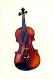 απομονωμένο βιολί Στοκ Φωτογραφία