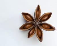 Απομονωμένο γλυκάνισο αστεριών Στοκ εικόνα με δικαίωμα ελεύθερης χρήσης