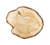 απομονωμένο δέντρο κολο&b Στοκ Φωτογραφίες