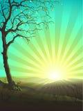 απομονωμένο δέντρο διανυσματική απεικόνιση