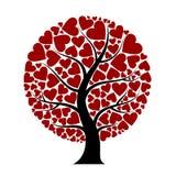 απομονωμένο λευκό δέντρων αγάπης έννοιας καρδιά Στοκ Φωτογραφία