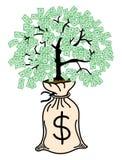 απομονωμένο λευκό δέντρων χρημάτων Στοκ Εικόνα