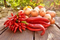 απομονωμένο λευκό λαχανικών πιπεριών κρεμμυδιών Στοκ Φωτογραφίες