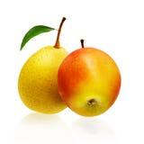 απομονωμένο λευκό αχλαδιών μήλων ανασκόπηση Στοκ Φωτογραφία