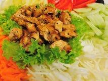 απομονωμένο λευκό σαλάτας ρυζιού κομματιών ροδάκινων μαϊντανού κύπελλων ανασκόπησης κοτόπουλο Στοκ Φωτογραφία