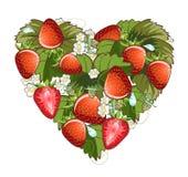 απομονωμένο λευκό φραουλών ανασκόπησης καρδιά Στοκ Εικόνες
