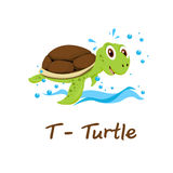 Απομονωμένο ζωικό αλφάβητο για τα παιδιά, Τ για τη χελώνα Στοκ Εικόνα