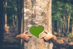 απομονωμένο διάφορο διάνυσμα δέντρων σημαδιών αντικειμένου αγάπης λογότυπων Στοκ Φωτογραφίες