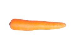 Απομονωμένο καρότο Στοκ Εικόνα