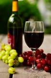 απομονωμένο κρασί waite του OM κόκκινο Στοκ εικόνες με δικαίωμα ελεύθερης χρήσης