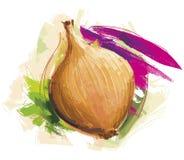 απομονωμένο κρεμμύδι ελεύθερη απεικόνιση δικαιώματος