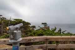 Απομονωμένο κυπαρίσσι σε Monterey Στοκ εικόνα με δικαίωμα ελεύθερης χρήσης