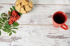 απομονωμένο λευκό σορβιών ανασκόπησης κλάδος Καρδιές μπισκότων πιπεροριζών ΚΟΚΚΙΝΟΣ ΚΥΚΛΟΣ Στοκ φωτογραφία με δικαίωμα ελεύθερης χρήσης