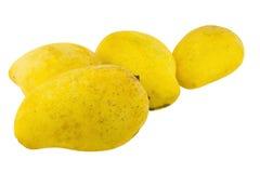 απομονωμένο μάγκο κίτρινο Στοκ Εικόνες