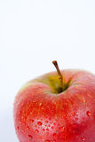απομονωμένο μήλο μακρο κό&ka Στοκ εικόνα με δικαίωμα ελεύθερης χρήσης