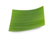 απομονωμένο μπανάνα φύλλο Στοκ Εικόνα