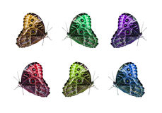 Απομονωμένο πεταλούδα κολάζ Στοκ εικόνα με δικαίωμα ελεύθερης χρήσης