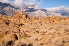 Απομονωμένο πεύκο Καλιφόρνια εξωτερικού λόφων της Αλαμπάμα ακριβώς στον κινηματογράφο επίπεδο Ro Στοκ εικόνα με δικαίωμα ελεύθερης χρήσης