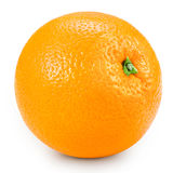 απομονωμένο πορτοκάλι Στοκ Εικόνες