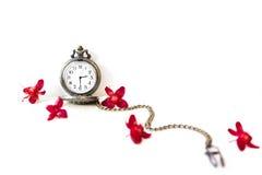 Απομονωμένο ρολόι τσεπών Στοκ Εικόνες