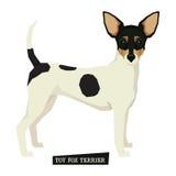 Απομονωμένο τεριέ διάνυσμα αλεπούδων παιχνιδιών συλλογής σκυλιών Στοκ φωτογραφία με δικαίωμα ελεύθερης χρήσης