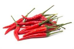απομονωμένο τσίλι κόκκινο πιπεριών Στοκ φωτογραφία με δικαίωμα ελεύθερης χρήσης