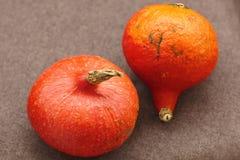 απομονωμένο φθινόπωρο λευκό κολοκύθας πορτοκαλιά κολοκύθα στο καφετί υπόβαθρο στοκ εικόνες