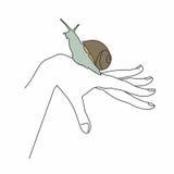 απομονωμένο χέρι σαλιγκάρι σχεδίου Στοκ Φωτογραφία