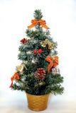 απομονωμένο Χριστούγεννα δέντρο Στοκ φωτογραφία με δικαίωμα ελεύθερης χρήσης