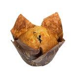 απομονωμένο muffin λευκό Στοκ Εικόνα