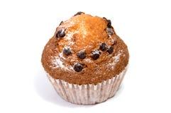 απομονωμένο muffin τσιπ σοκολάτα λευκό Στοκ Εικόνα