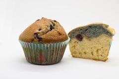 απομονωμένο muffin Στοκ Εικόνα