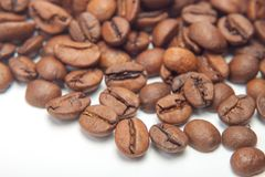 Απομονώστε τα φασόλια καφέ Μακροεντολή Άσπρο backgound Στοκ φωτογραφία με δικαίωμα ελεύθερης χρήσης