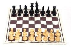 απομόνωση σκακιού Στοκ Εικόνες